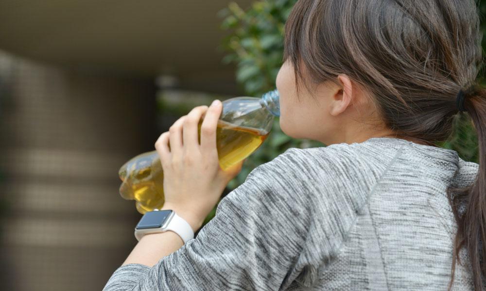 トレーニング後の栄養補給や疲労回復に効果的なマテ茶を紹介
