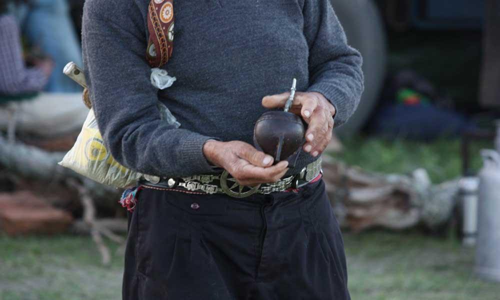 南米原産のマテ茶は、「飲むサラダ」と呼ばれるほど栄養豊富
